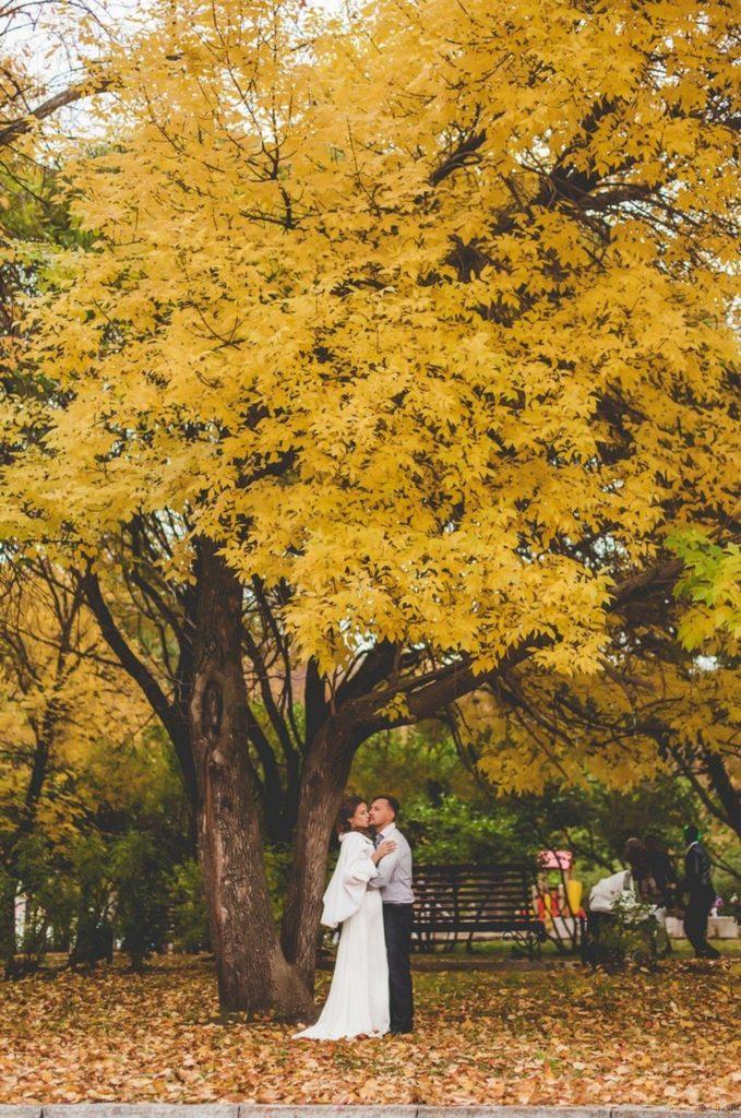 Дарья и Илья — Свадебная фотосессия